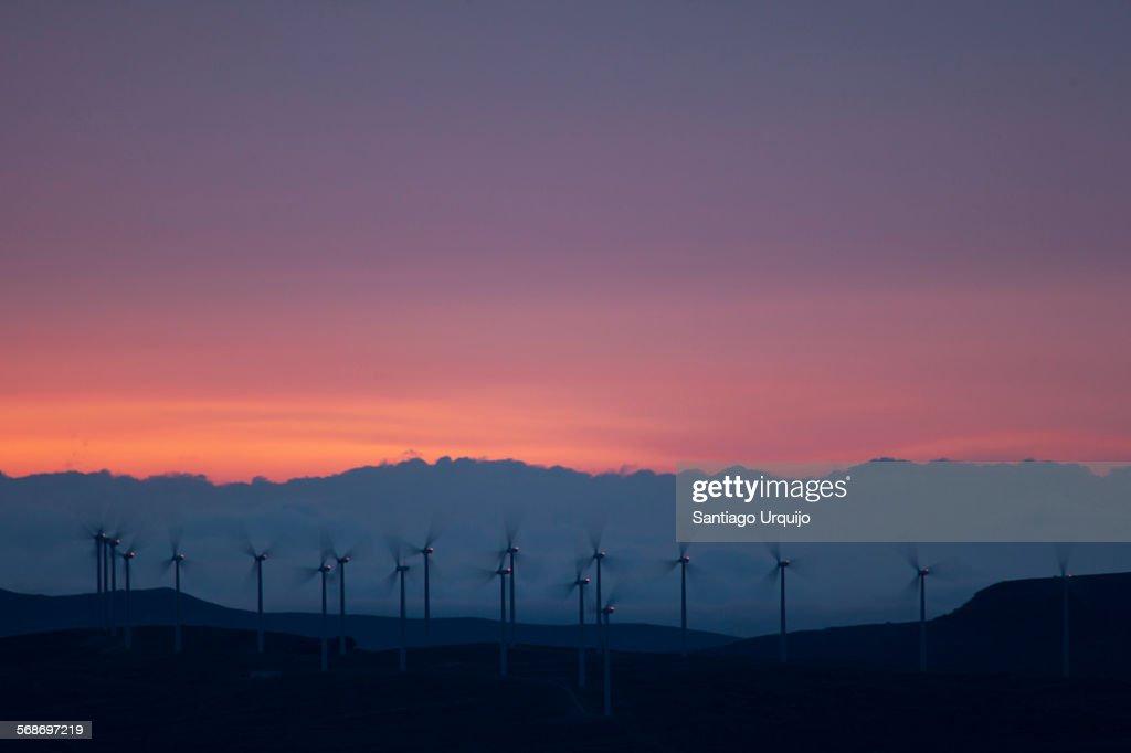 Line of windmills at sunset : Stock Photo