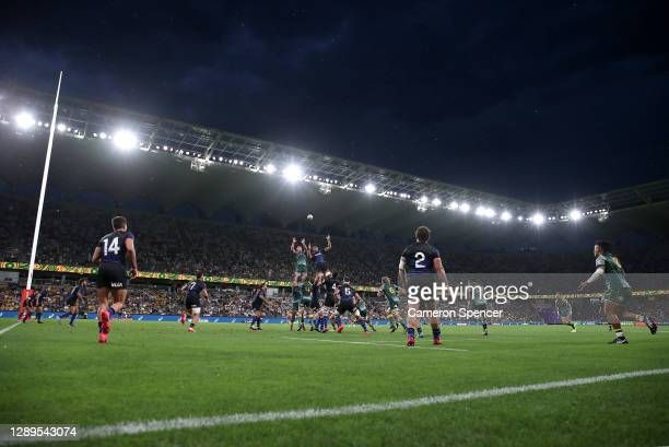 Line out during the 2020 Tri-Nations match between the Australian Wallabies and the Argentina Pumas at Bankwest Stadium on December 05, 2020 in...