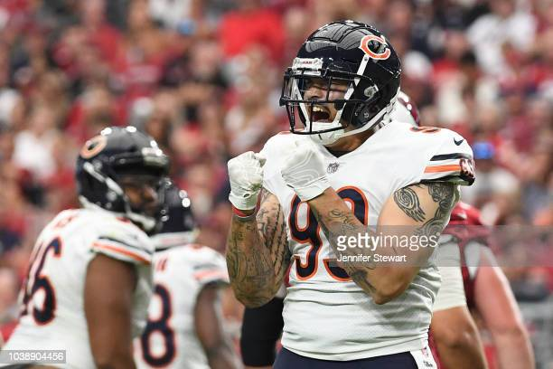 Linebacker Aaron Lynch of the Chicago Bears celebrates on the field during the NFL game against the Arizona Cardinals at State Farm Stadium on...