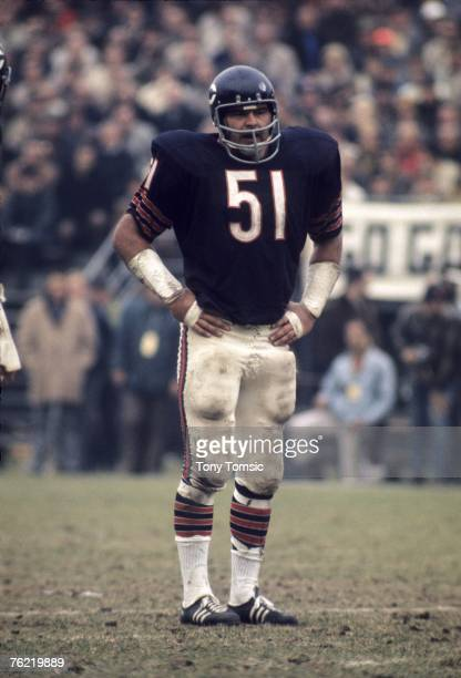 Linebacker Dick Butkus of the Chicago Bears awaits the next play during a game on November 8, 1970 against the San Francisco 49ers at Wrigley Field...