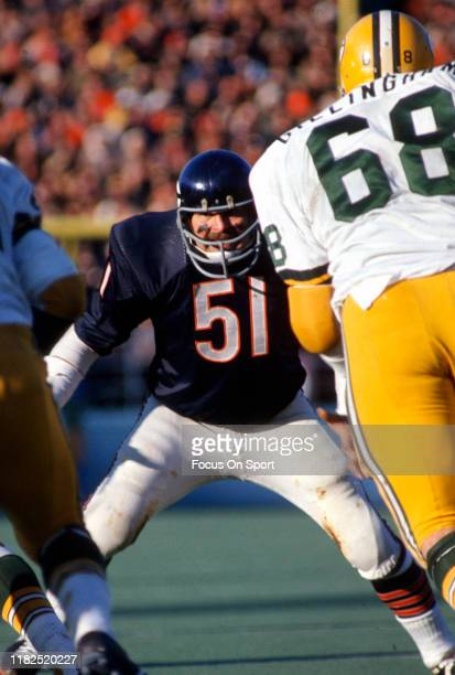 Linebacker Dick Butkus of the Chicago Bears in action against the Green Bay Packers during an NFL football game November 7, 1971 at Soldier Field in...