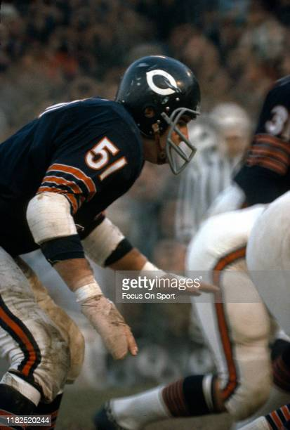 Linebacker Dick Butkus of the Chicago Bears in action during an NFL football game circa 1965 at Soldier Field in Chicago, Illinois. Butkus played for...