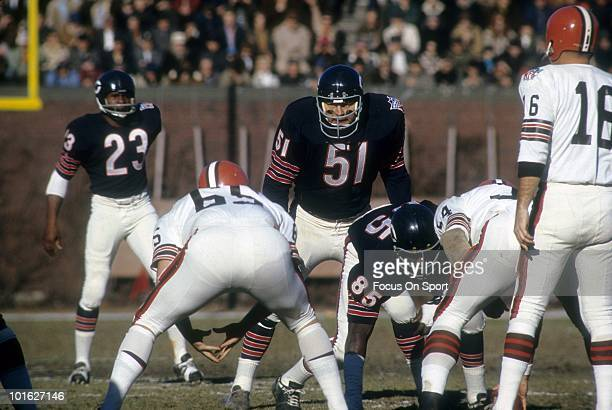 Linebacker Dick Butkus of the Chicago Bears ready for action against the Cleveland Browns November 30 1969 during an NFL football game at Wrigley...