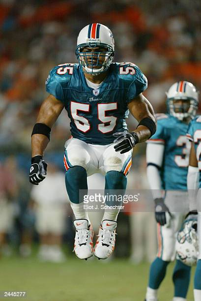 Linebacker Junior Seau of the Miami Dolphins gets pumped up between plays against the Atlanta Falcons during the NFL preseason game at Pro Player...