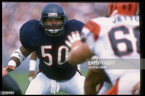 Linebacker Mike Singletary of the Chicago Bears looks on during a game against the Cincinnati Bengals on September 10 1989 at Soldier Field in...