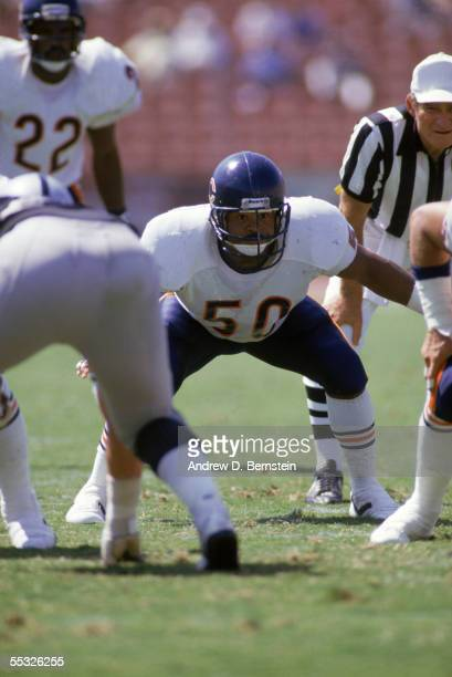 Linebacker Mike Singletary of the Chicago Bears readies for a play during a preseason game against the Los Angeles Raiders at Memorial Coliseum on...