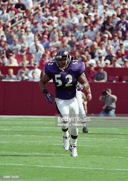 Linebacker Ray Lewis of the Baltimore Ravens runs onto the field to get into position to play the Washington Redskins at FedEx Field on October 15...