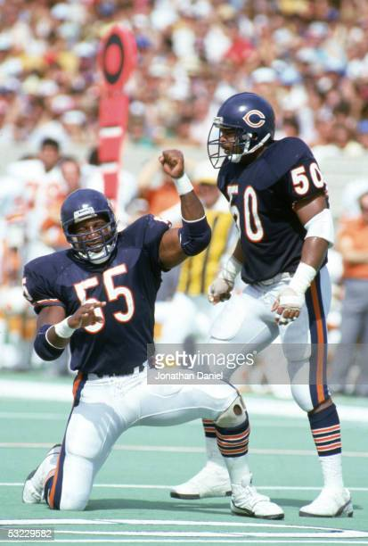 Linebackers Otis Wilson and Mike Singletary of the Chicago Bears celebrate on the field during the game against the Tampa Bay Buccaneers at Soldier...
