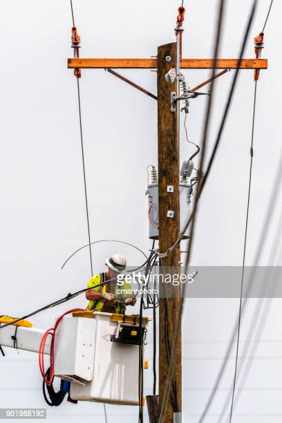 lineman installing new feeder cables for new transformer on new pole - cmannphoto stock pictures, royalty-free photos & images