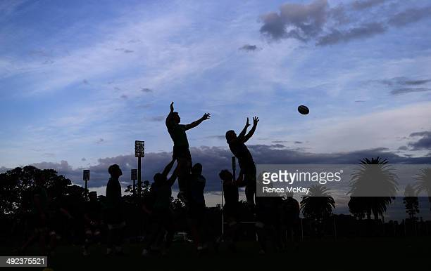 Lineout practice during a Waratahs Super Rugby training session at Kippax Lake on May 20 2014 in Sydney Australia
