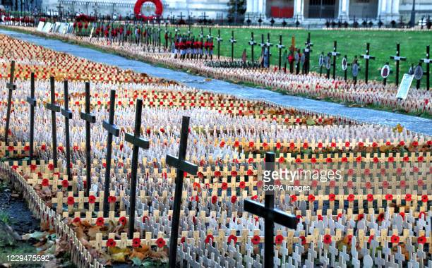 Lines of poppies and crosses placed in front of the abbey prior to the Remembrance Day service. Hundreds of crosses with poppies are being laid in...