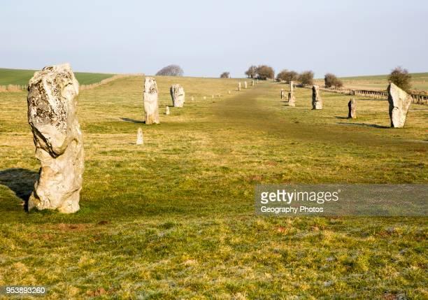 Lines of standing sarsen stones form the Avenue, Avebury World Heritage site, Wiltshire, England, UK.