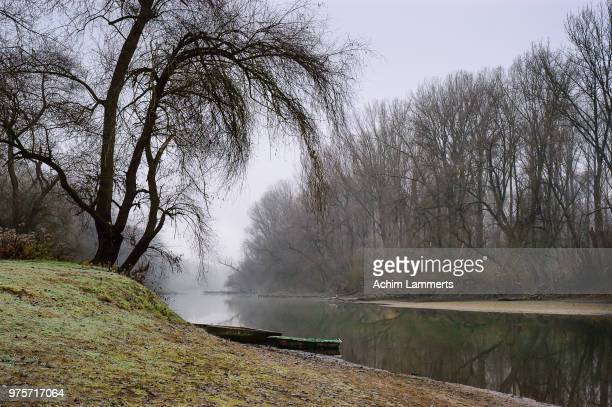 lingenfeld,germany - achim lammerts stock pictures, royalty-free photos & images