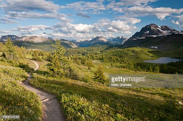 lingering at healy pass - lingering stock pictures, royalty-free photos & images