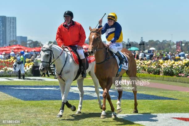 Linguist ridden by Linda Meech returns after winning the DrinkWise Plate at Flemington Racecourse on November 09 2017 in Flemington Australia