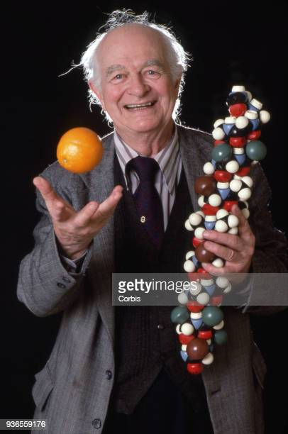 Linus Pauling twotime Nobel Prize winner and proponent of heavy vitamin C use tosses an orange in the air