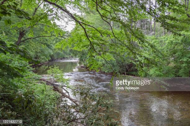 linville river - 南東 ストックフォトと画像