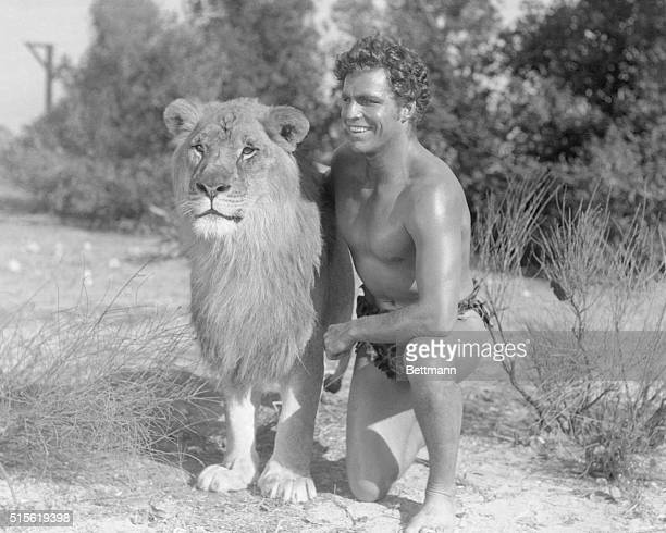 A Lion and a Crabbein Hollywood Hollywood California Buster Crabbe Olympic swimming champion who is one of the latest celebrity recruits to the films...