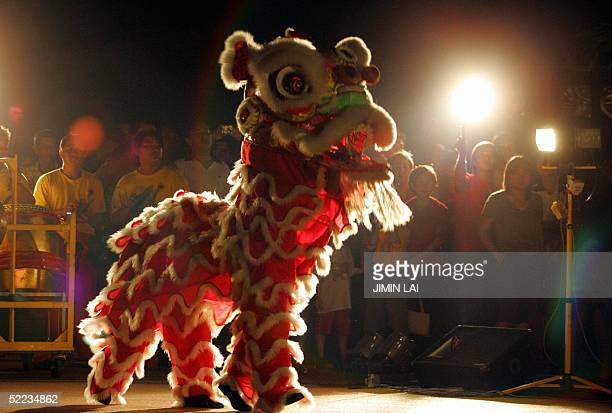 A lion dance is performed in Kuala Lumpur late 23 February 2005 during the fifteenth and last day of the Chinese New Year celebrations The 15th day...