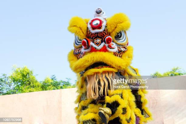 lion dance - prosperity stock pictures, royalty-free photos & images