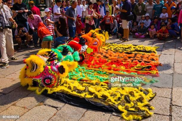 Lion dance show in Lunar New Year, Viet Nam.