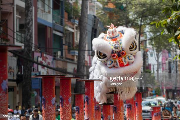 Lion dancing show in chinese new year festival at street
