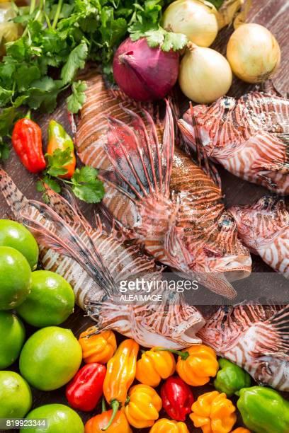 Verduras y pescado de León