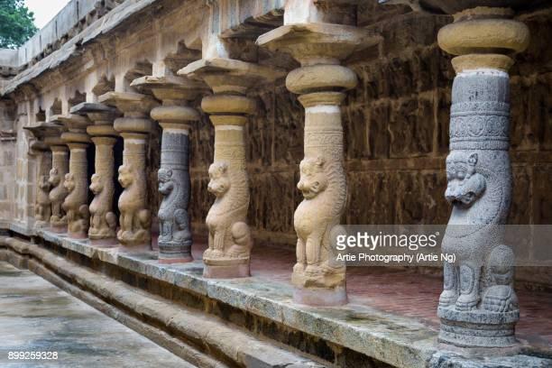 lion pillars of vaikunta perumal temple (thiru parameswara vinnagaram), kanchipuram, tamil nadu, south india - 6th century bc stock photos and pictures