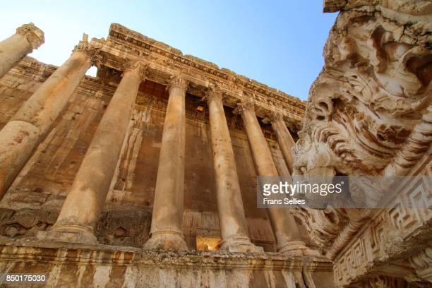 lion sculpture, once part of the temple of bacchus in baalbek, lebanon - frans sellies stockfoto's en -beelden