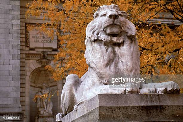 lion statue and new york public library - new york public library stock pictures, royalty-free photos & images