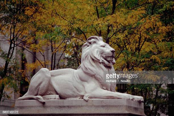 lion statue in front of new york public library - new york public library stock pictures, royalty-free photos & images