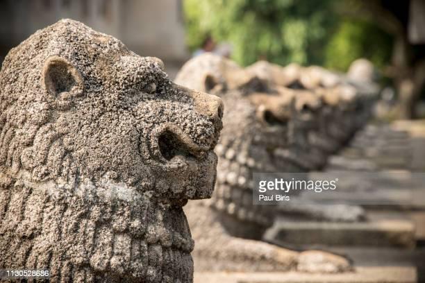 lion statues, independence memorial hall,  colombo, sri lank - kapitell stock-fotos und bilder