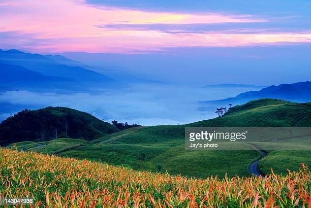 liou shih dan shan - hualien county stock pictures, royalty-free photos & images