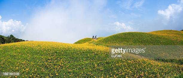 lioushihdan mountain - rolling landscape stock pictures, royalty-free photos & images