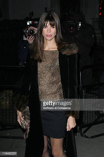 Lisa B during Andy Wong's Chinese New Year Party January 28 2006 at Royal Courts of Justice in London Great Britain