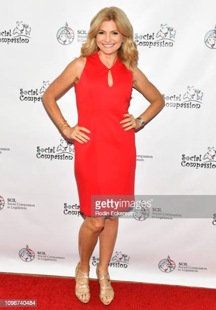 Lisa Bloom attends the Social Compassion in Legislation Hosts Sunset On Sunset Event Honoring AnimalRights Pioneers at Andaz West Hollywood on...