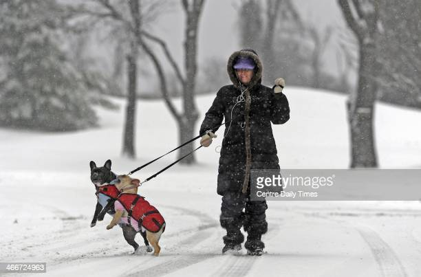Lisa Drobka walks her dogs Louis left and CiCi through the snow along Scenery Drive in State College Pa A winter storm in Centre County Monday Feb 3...