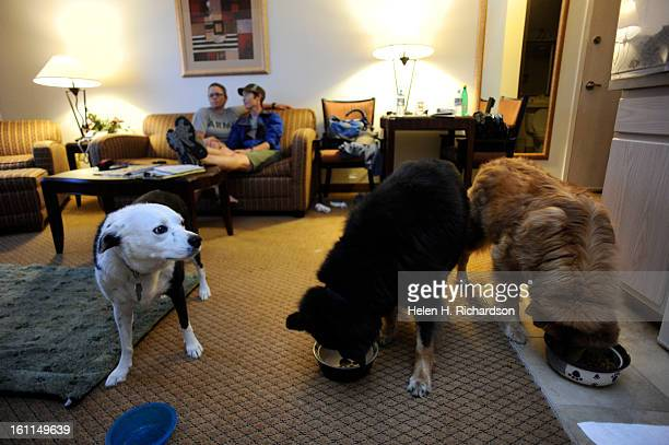 Lisa Polansky left and her girlfriend Ashley Woods right watch as their three dogs eat their dinner They makes sure to keep them lined up and...