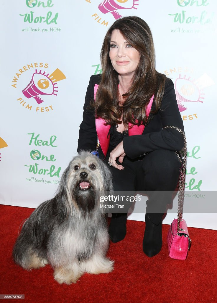 Lisa Vanderpump arrives to the 2017 Awareness Film Festival Opening Night Premiere of 'The Road to Yulin and Beyond' at Regal LA Live Stadium 14 on October 5, 2017 in Los Angeles, California.
