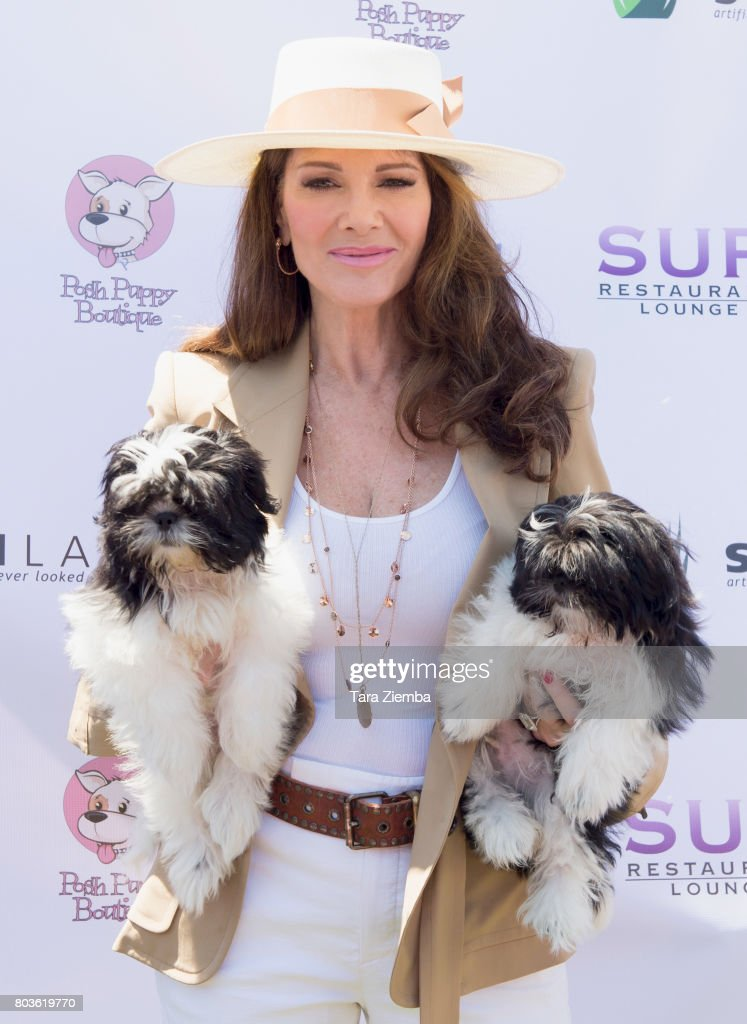 2nd Annual World Dog Day - Arrivals : News Photo