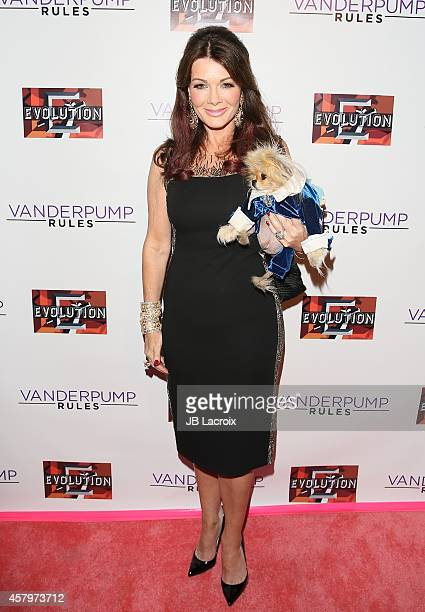 Lisa Vanderpump attends Vanderpump Rules Season 3 cast and crew party held at SUR Lounge on October 27 2014 in West Hollywood California