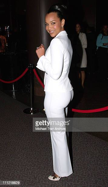 LisaRaye during 16th Annual NAACP Theatre Awards Arrivals at Director's Guild of America in Los Angeles California United States