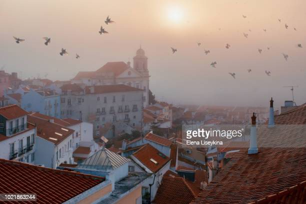 lisbon viewpoint. - lisbon stock pictures, royalty-free photos & images