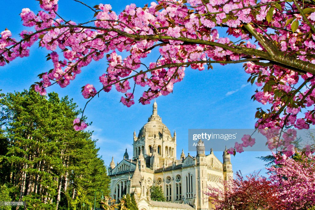Basilica of St. Therese of Lisieux. : News Photo