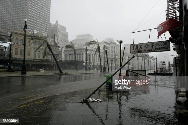 Listing palm trees and upended light poles are left in the wake of Hurricane Katrina August 29, 2005 on Canal Street in New Orleans, Louisiana....