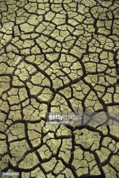 Lit asséché du lac Tchad pendant une sécheresse au Niger en novembre 1984