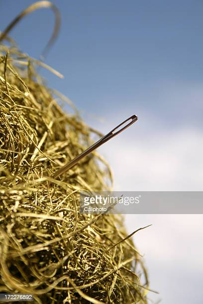 A literal image of a needle sticking out of a haystack