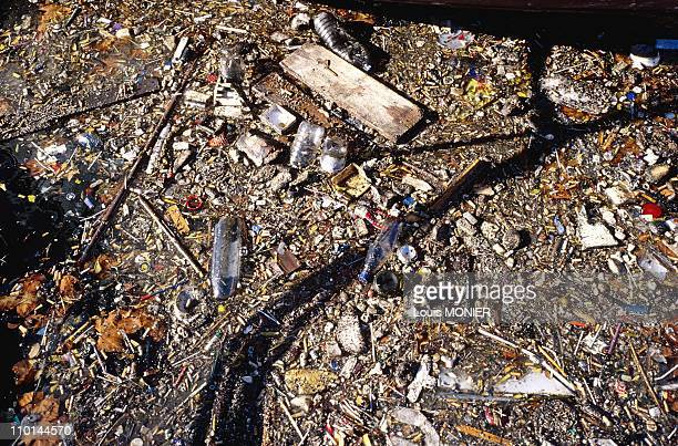 Literary festival 'Books in freedom' in Toulon France on November 15 1998 Sea Pollution