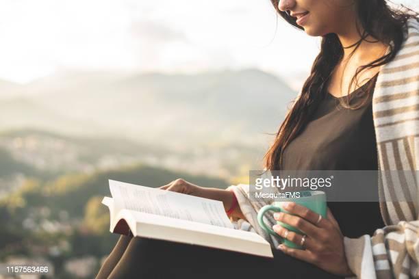 セラ・ドス・オルガンス国立公園の文学(コルティソ・ストーン)、リオデジャネイロ、ブラジル - 読む ストックフォトと画像