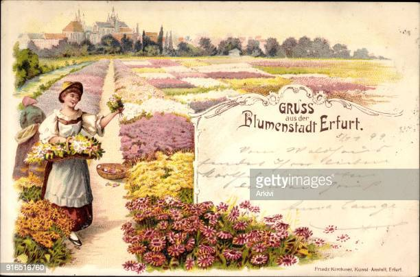 Litho Erfurt in Thüringen Blumenstadt Blick vom Blumenfeld auf die Stadt